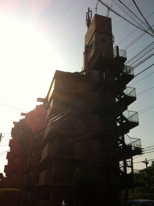 参考資料1: コスモ三鷹パークサイドマンション ※野川公園に一番近いマンションです!!
